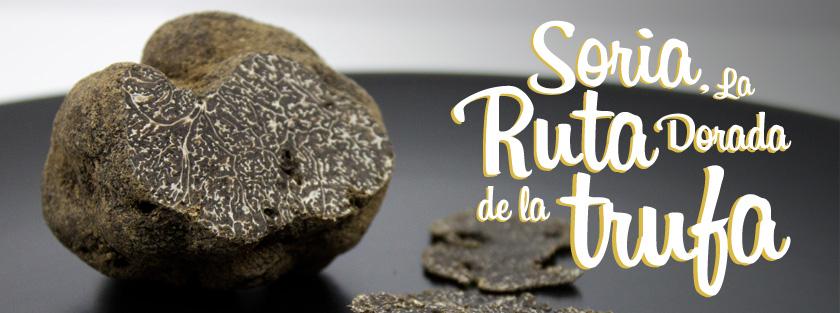 Caja Rural, Ver Recetas y Castillejo de Robledo organizan la Ruta Dorada de la Trufa