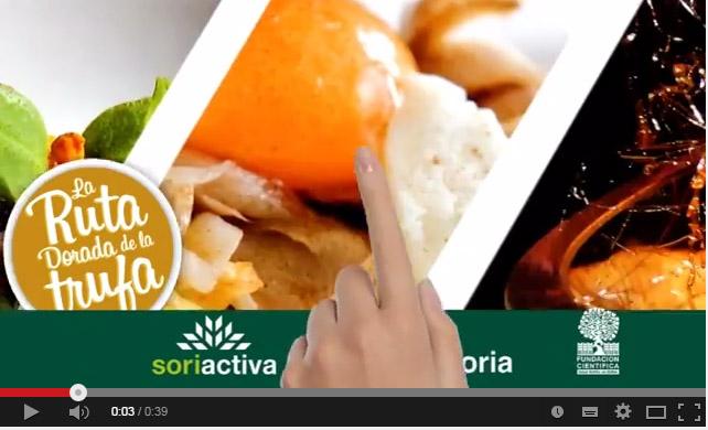 Descubre que te ofrece el festival gastronómico de la Ruta Dorada de la Trufa en Soria