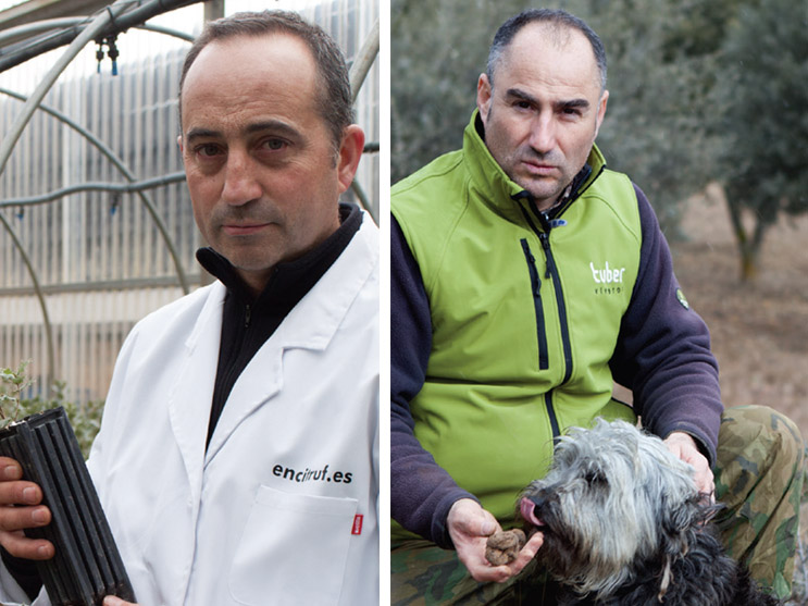 Javier López y Carlos Fresneda, de Encitruf y Viveros Tuber, representantes de la trufa negra en Soria