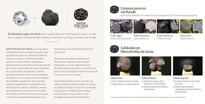 Flyer del Mercatrufas de Soria