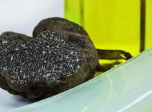 Cómo se cultiva y recolecta la trufa negra de Soria